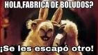 :fabrica_de_boludos: